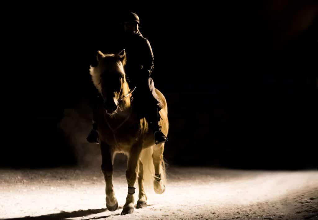 Reiter und sein Pferd im Dunkeln